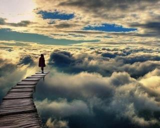 lucid dream travelling with pamela anderson aidan j reid